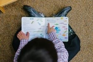 Picture of Learning to be an independent reader (K-1)